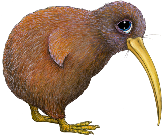Pip the Kiwi