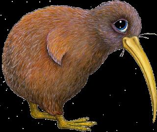 Pip the Kiwi